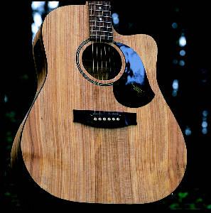 guitar-maton-225.jpg
